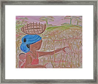 Cotton Balls Framed Print by Carmen  Jackson