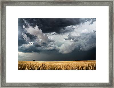 Cotton Candy Framed Print by Sean Ramsey