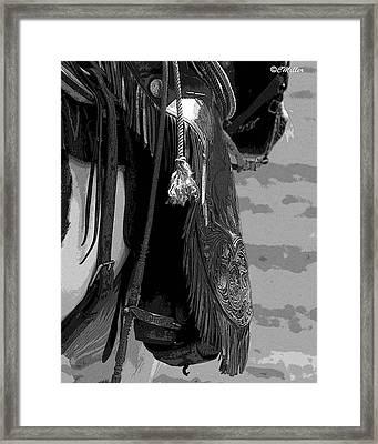 Cotton Framed Print by Carol Miller