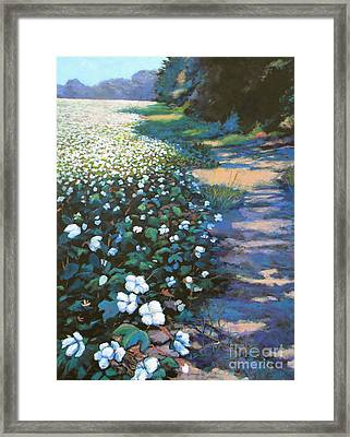 Cotton Field Framed Print by Jeanette Jarmon