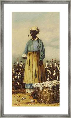 Cotton Pickers - A Woman Framed Print by William Walker