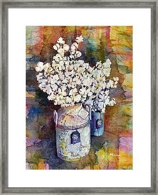 Cotton Stalks Framed Print by Hailey E Herrera