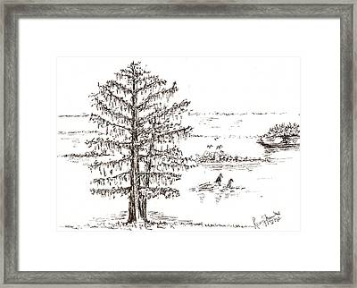 Cotton Tree In A South-east Asian Countryside Framed Print by Remy Francis