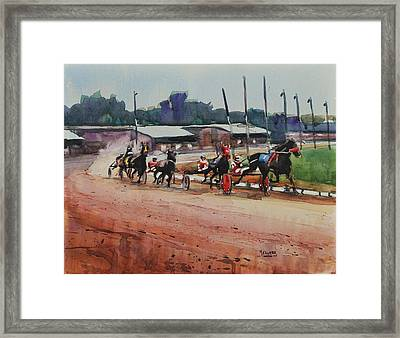 Cotton Wins Framed Print by Spencer Meagher
