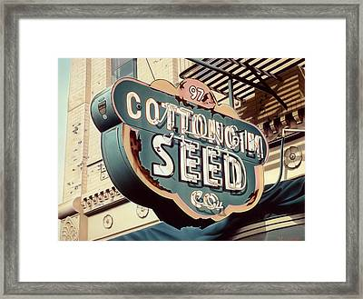 Cottongim Seed Framed Print by Van Cordle