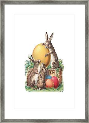 Cottontails And Eggs Framed Print