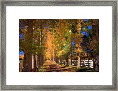 Cottonwood Alley Framed Print