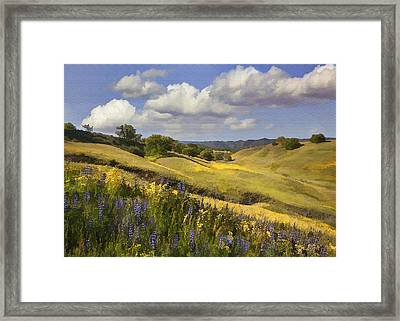 Cottonwood Canyon Framed Print by Sharon Foster