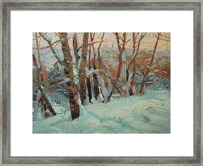 Cottonwood Grove Framed Print
