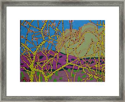 Cottonwood Number 4 Framed Print by Ray  Petersen