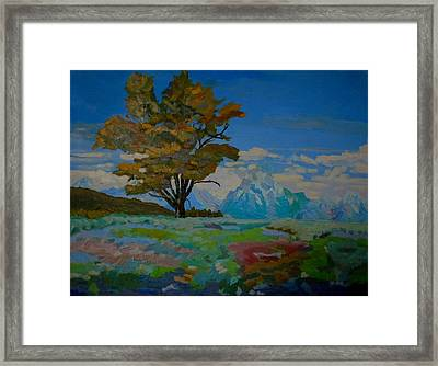 Cottonwood On Teton Range Framed Print