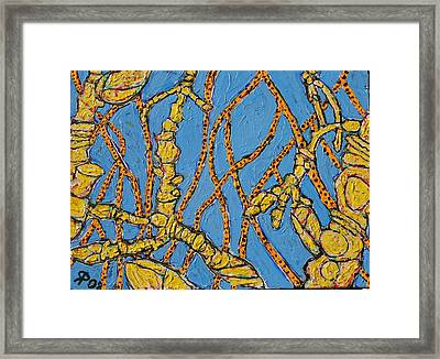 Cottonwood Twigs  Sold Framed Print by Ray  Petersen