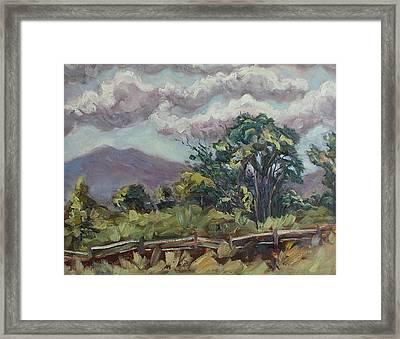 Cottonwoods At The Ranch Framed Print by Zanobia Shalks