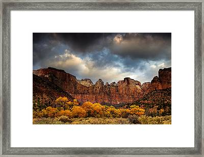 Cottonwoods Of Zion Framed Print by Andrew Soundarajan
