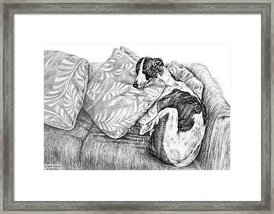 Couch Potato Greyhound Dog Print Framed Print by Kelli Swan