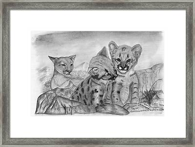 Cougar As She Watches Her Cubs Framed Print by Russ  Smith