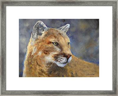 Cougar Framed Print by Debra Mickelson
