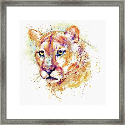 Cougar Head Framed Print by Marian Voicu
