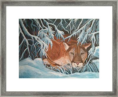 Cougar In Snow Framed Print by Nick Gustafson