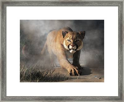 Cougar Is Gonna Get You Framed Print by Daniel Eskridge
