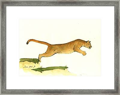Cougar Framed Print by Juan Bosco
