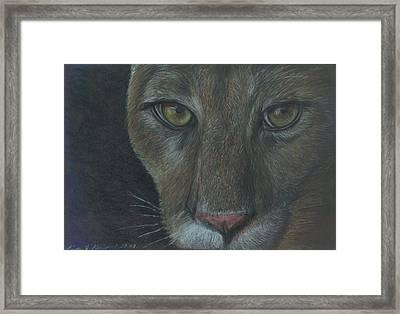 Cougar Framed Print by Linda Nielsen