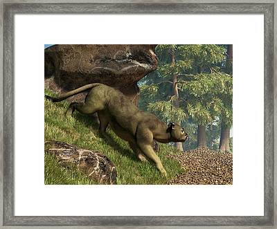 Cougar Pass Framed Print by Daniel Eskridge