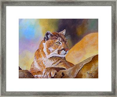 Cougar Wildlife Framed Print
