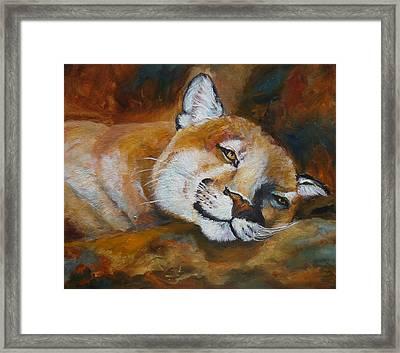 Cougar Wildlife Painting Framed Print by Mary Jo Zorad