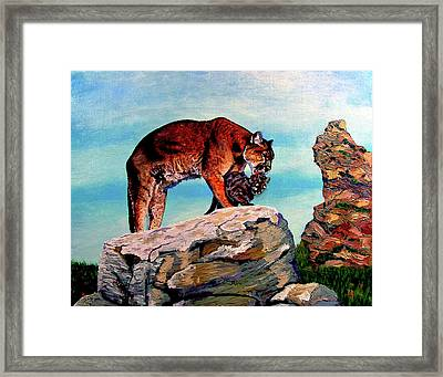 Cougars Mother And Cub Framed Print by Stan Hamilton