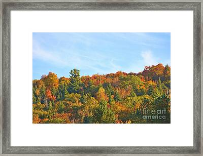 Framed Print featuring the photograph Couleurs D' Automne by Aimelle