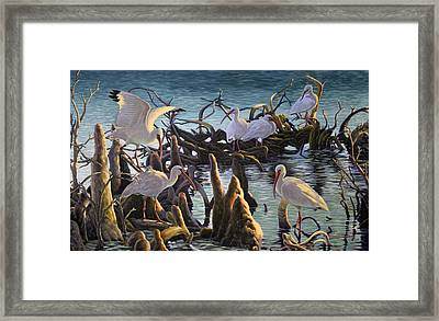 Council Of The Elders Framed Print