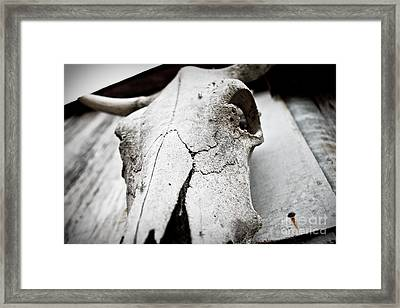 Country Afterlife Framed Print by Pixel Perfect by Michael Moore