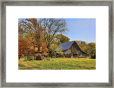 Country Barn And A Pink Flamingo By H H Photography Of Florida Framed Print
