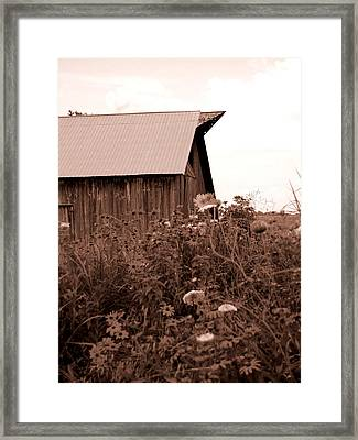 Country Barn Framed Print by Audrey Venute