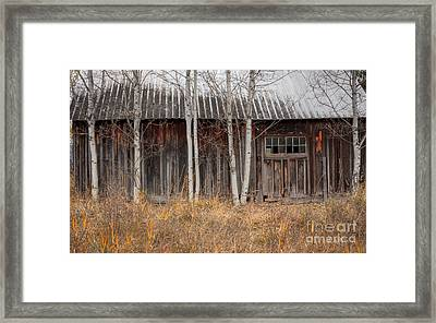 Country Barn Framed Print by Idaho Scenic Images Linda Lantzy