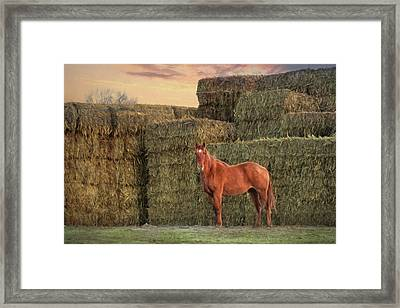 Country Buffet Framed Print by Lori Deiter