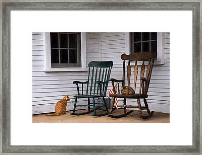 Country Cats Framed Print by Robin-Lee Vieira