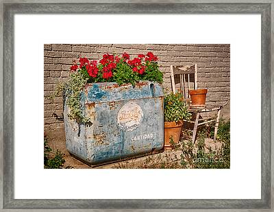 Country Chic In Mancos Colorado Framed Print