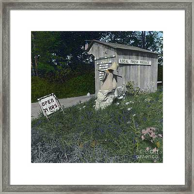 Country Convenience Framed Print by Rosemary Pipitone