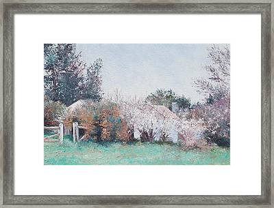 Country Cottage In Spring Time Framed Print
