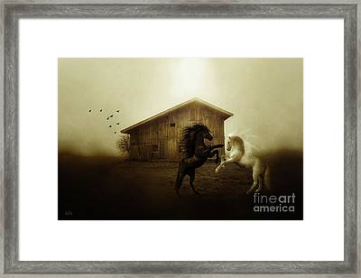 Country Dawn Framed Print