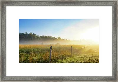 Country Fencerow Framed Print