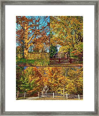 Country Fences Collage Framed Print