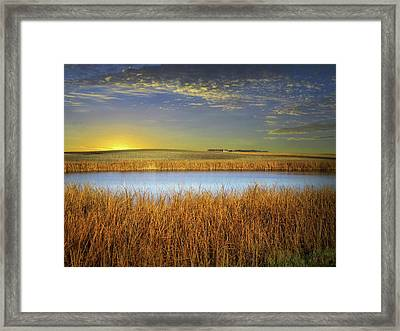 Country Field 2 Framed Print