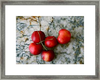 Country Kitchen Framed Print by Sherry Klander