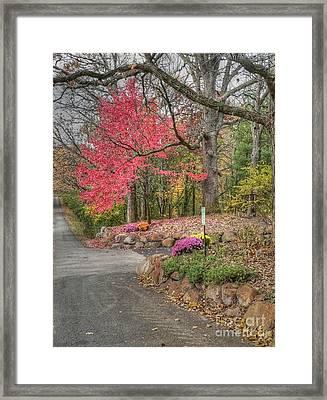Country Lane In Fall Framed Print by David Bearden