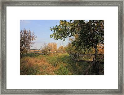 Country Lane Framed Print by Jim Sauchyn