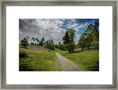 Country Lane Framed Print by Martin Newman