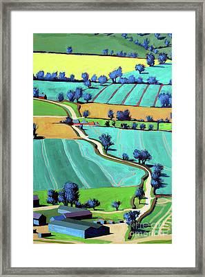 Country Lane Summer II Framed Print